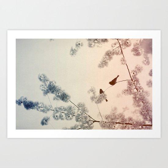 Central Park In Bloom #4 Art Print
