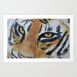 Tiger Eyes 2 Art Print
