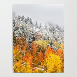 Fall to Winter Poster