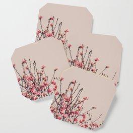 Vintage Magnolia Flowers Coaster