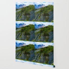 Views along the Wilcox Pass Hike in Jasper National Park, Canada Wallpaper