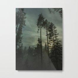 Secret in the Fog Metal Print