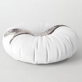 Harbour Seal Floor Pillow