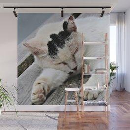 Cat Dreaming Wall Mural