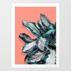 Skyward Plant Art Print