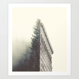 Flatiron & the Woods Art Print