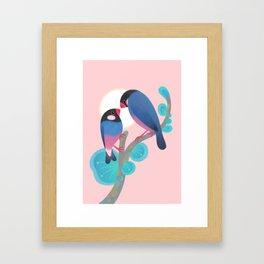 Java sparrows Framed Art Print