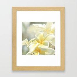 Na Lei Pua Melia Aloha e ko Lele Framed Art Print