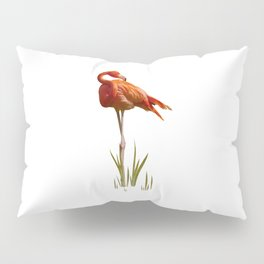 The Florida Flamingo Pillow Sham