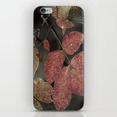 fall grime iPhone & iPod Skin