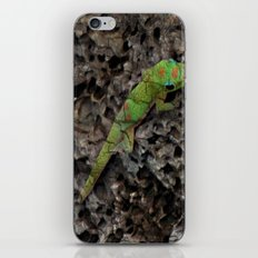 Gecko iPhone & iPod Skin