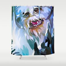 SW#34 Shower Curtain