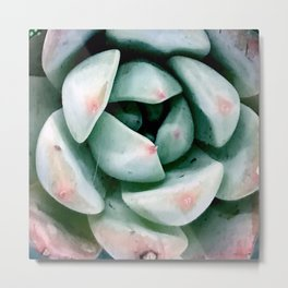 Succulent Avant-Garde in Pastel Green With Pink Splashes Metal Print