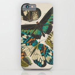 E.A.Séguy - Papillons / Butterflies (1925) Plate 10 iPhone Case