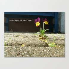 Little Flower - Where there is life, there is hope Canvas Print