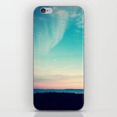 Simplify iPhone & iPod Skin