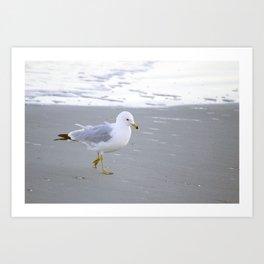 Sea Gull Stroll Art Print