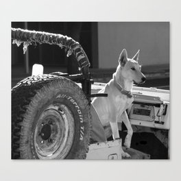 Jeep Dog Canvas Print