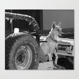 Jeep Dog Canvas Print