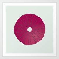 Sea's Design - Urchin Skeleton (Deep Pink) Art Print
