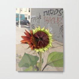 graffiti sunflower half bloom brooklyn urban nature photography by cecilia lee Metal Print