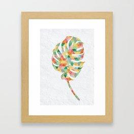 Monstera Colora Framed Art Print