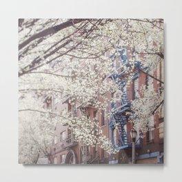Blossom Of East Village Metal Print