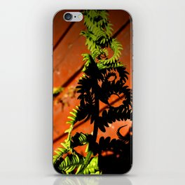 Twists and Ferns iPhone Skin