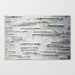 Black and White Birch Bark Canvas Print