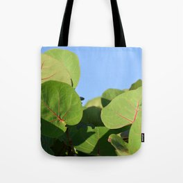 DELRAY GREEN BEACH TOTE Tote Bag