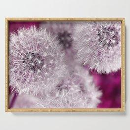 Dandelion pink Serving Tray
