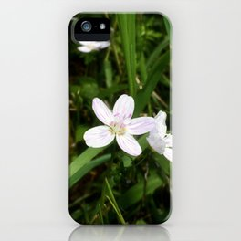 Spring Beauty 06 iPhone Case