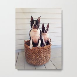 Basket Cases Metal Print