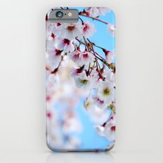 Arboretum Blossoms iPhone 6 Slim Case