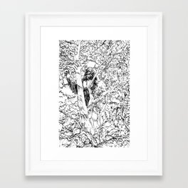Sasquatch picking apples Framed Art Print