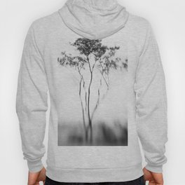 Black and White photo of African Tree Hoody
