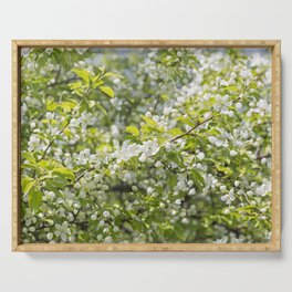 Crabapple Blossoms 12 Serving Tray