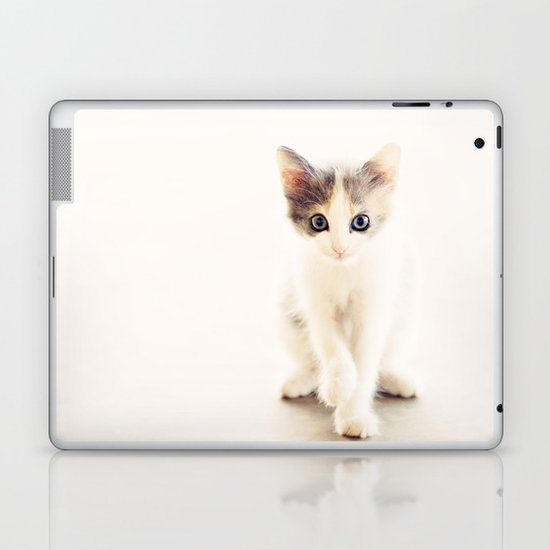 White and Grey Kitten Laptop & iPad Skin