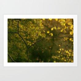 Golden Green Art Print