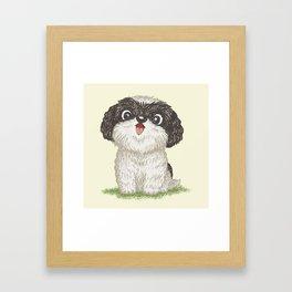 Shih Tzu happy Framed Art Print