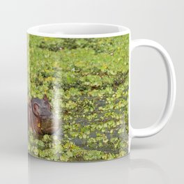 Little Hippo, Africa wildlife Coffee Mug