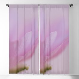 Along the edge - Ranunculus abstract flower photo Blackout Curtain