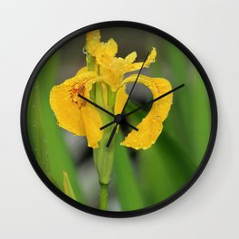 Yellow Flag Iris Wall Clock