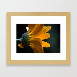 unterwegs_1110 Framed Art Print
