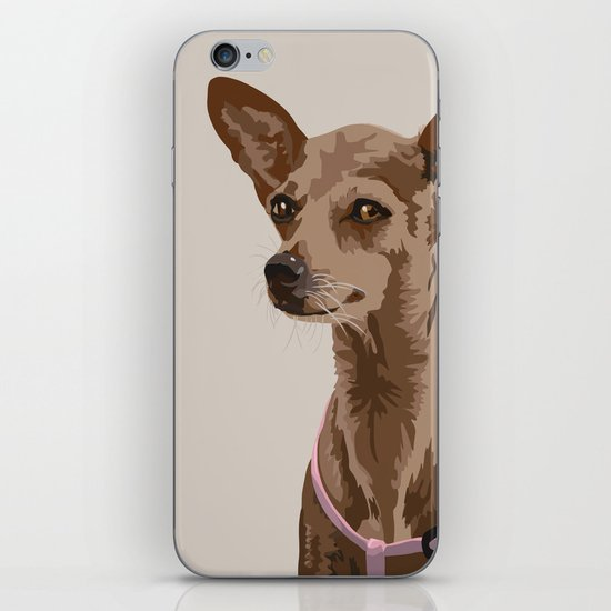Macy the Chihuahua Dog iPhone & iPod Skin