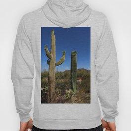 In The Sonoran Desert Hoody