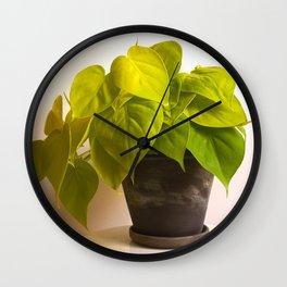 epipremnum neon Wall Clock