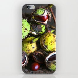 Still Life with CHESTNUTS iPhone Skin