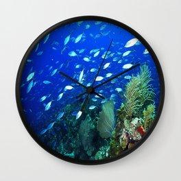 Roatan Reef Wall Clock