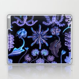 Haeckel's Sea of Darkness Laptop & iPad Skin